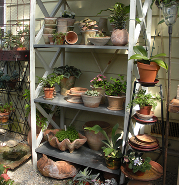 greenhouse-gallery-05