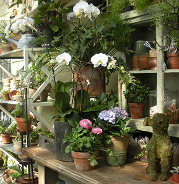 greenhouse-gallery-07